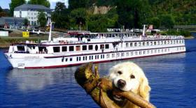 Fluss-Kreuzfahrt mit Hund