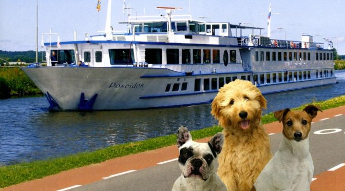 Fluss-Kreuzfahrt mit Hund 2018